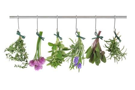 atados: Hojas de hierba y flores empat� en racimos colgantes y secado en un poste de acero inoxidable, aislado sobre fondo blanco.  Foto de archivo