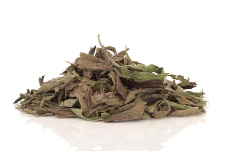 plantain herb: Dried plantain herb leaves used in herbal medicine isolated over white background.  Plantago.