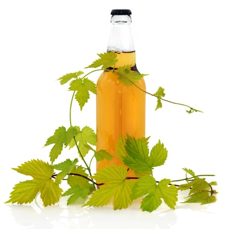 Beer bottle with hop leaf vine, isolated over white background. photo