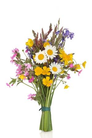 flor silvestre:  Variedades de flores y hierba empat� en un mont�n aislado sobre fondo blanco.