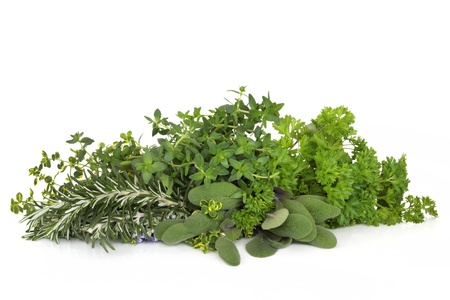 Herb leaf selection of parsley, thyme, sage and rosemary with flowers  isolated over white background. Stock Photo - 8381947