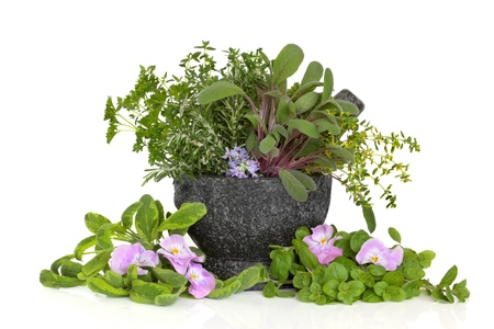 Herb leaf sprigs of oregano, sage, thyme, parsley with  rosemary and viola flowers, in a granite mortar with pestle,  isolated over white background. Stock Photo - 8424739