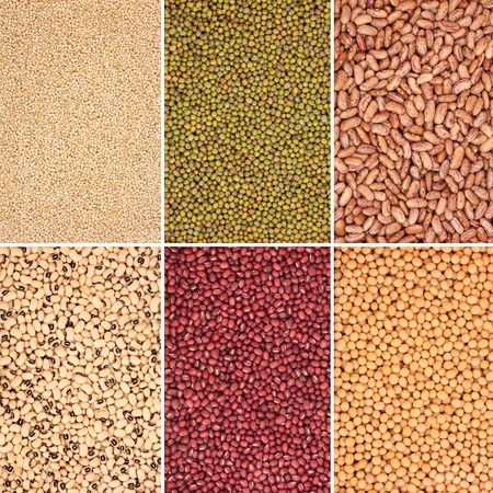soya beans:  Pulse, selection, bean, pea and grain selection in abstract design with borders. Quinoa grains, mung, pinto, black eyed peas, adzuki and soya beans, top left to bottom right. Stock Photo