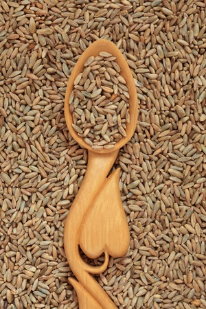 Rye wheat grain in a carved wooden spoon with heart shape. Stock Photo - 8624909