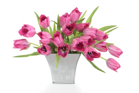 Pink tulip flowers in a distressed pewter  vase, isolated over white background. photo