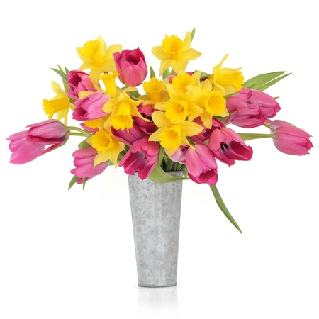 Tulip and daffodil flowers in a distressed aluminum vase, over white background. photo