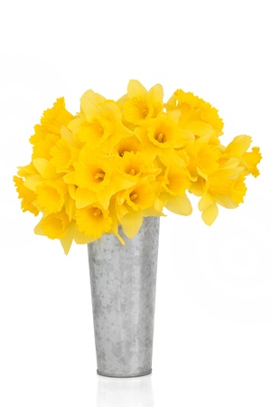 Daffodil flowers in a distressed aluminum vase, over white background. Stock Photo - 8879131