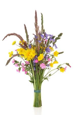 野草: 野生草の茎、白い背景で隔離のローズ、タンポポ、キンポウゲ、ブルーベル カンピオン花と春ワイルドフラワー野草の花束。