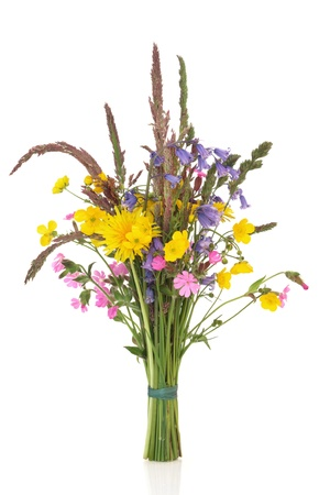 grasses: Spring wildflower posy with bluebell, buttercup, dandelion and rose campion flowers with wild grass stems, isolated over white background.