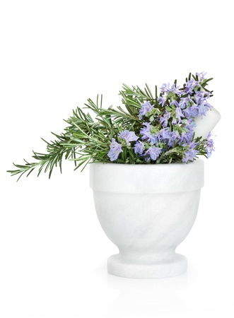 Rosemary herb with flowers in a marble mortar with pestle, isolated over white background. Stock Photo
