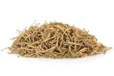 lonicerae: Dried honeysuckle flower petals in a pile, over white background. Used in chinese and alternative herbal medicine. Jin Yin Hua. Flos lonicerae japonicae.