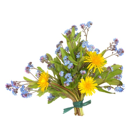 Spring wildflower posy of forget me knots and dandelions, isolated over white background. Stock Photo - 9219157