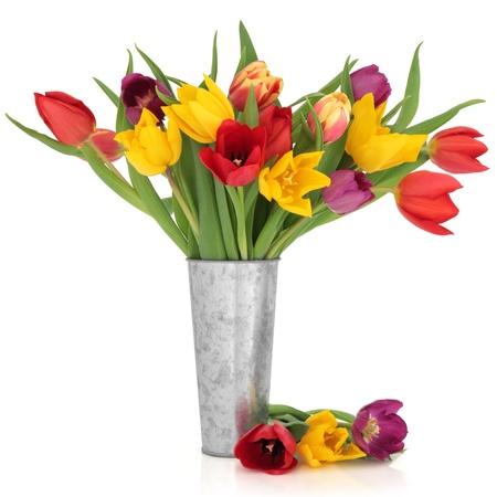 Tulip flores en los colores del arco iris en un vaso de aluminio angustiado y aislado suelto sobre fondo blanco.