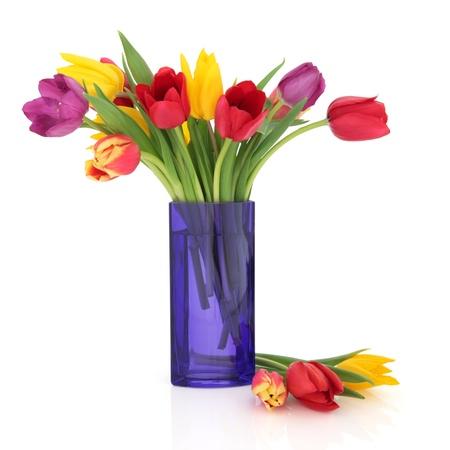 florero: Tulip flores en los colores del arco iris en un jarr�n de cristal azul y aislado suelto sobre fondo blanco.