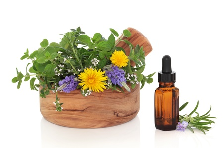 Herb leaf and flower sprigs of rosemary, lavender, mint, marjoram and dandelion flowers  in an olive wood mortar with pestle and an essential oil glass bottle, isolated over white background. photo