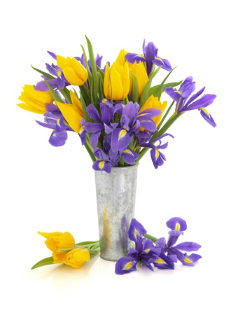 Purple iris and yellow tulip flower arrangement in an aluminum vase and loose isolated over white background. photo