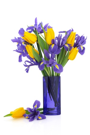 vase: Iris and yellow tulip flower arrangement in a blue glass vase and loose isolated over white background.