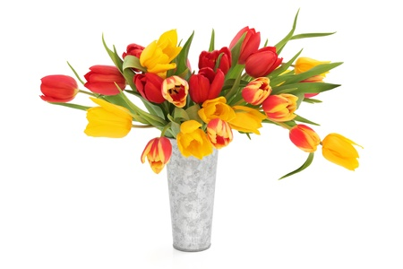 Tulip flowers in a distressed aluminum vase isolated over white background. photo