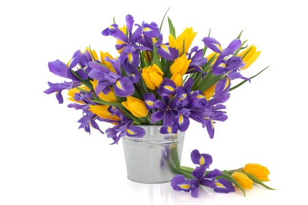 Iris and tulip flower arrangement in a metal aluminum pot and loose isolated over white background. photo