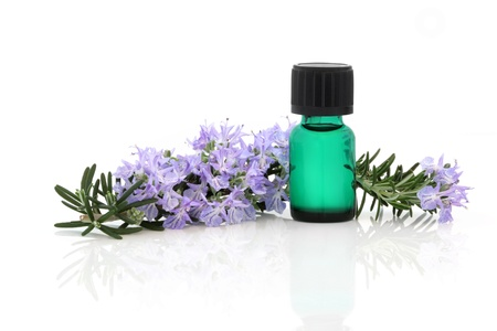 aromatherapy: Rosemary herb flower and leaf sprig with aromatherapy essential oil glass bottle, isolated over white background.