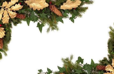 yedra: Borde de Navidad de holly, ivy, conos de pino, hojas de roble dorados y ramillete de hojas de abeto de abeto azul aisladas sobre fondo blanco. Foto de archivo