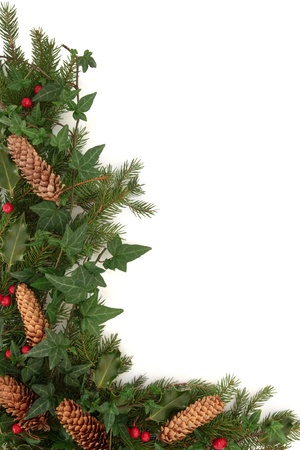 Christmas border of holly, ivy, pine cones and blue spruce fir leaf sprig isolated over white background. photo