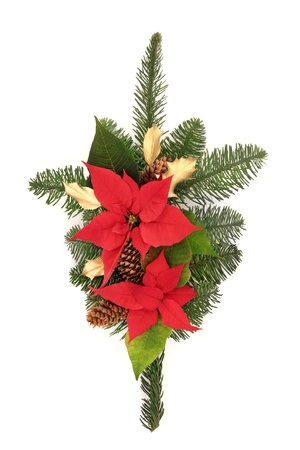 christmas display: Christmas decoration of poinsettia flower heads, golden holly, pine cones and blue spruce leaf sprig isolated over white background. Stock Photo