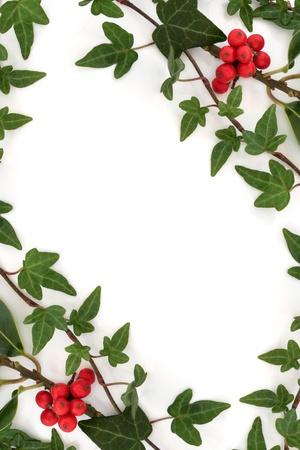 yedra: La hoja de hiedra y ramitas de acebo con bayas rojas de la hoja la creaci�n de una frontera abstracta aislado sobre fondo blanco.