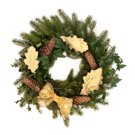 pinecone: Christmas wreath of  holly, ivy, pine cones, blue spruce pine  gold bow and oak leaf sprigs isolated over white background.