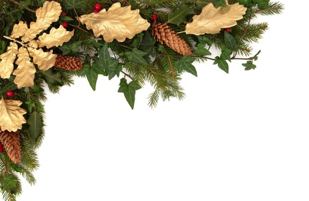 Christmas border of holly, ivy, pine cones, golden oak leaves and spruce fir leaf sprig isolated over white background.