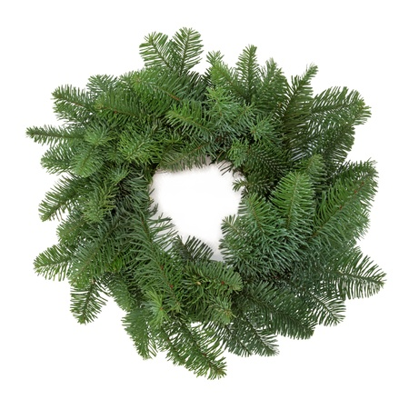 thorn: Christmas wreath of blue spruce pine fir, with no decorations isolated over white background. Stock Photo