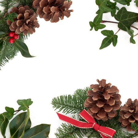 Christmas decorative border of holly, ivy, mistletoe, pine cones and spruce fir leaf sprig with red ribbon isolated over white background. photo