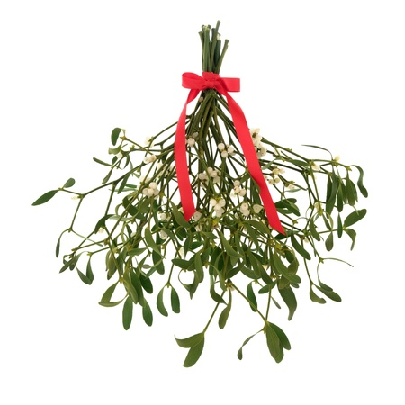 Mistletoe with berries and tied with a red ribbon with bow isolated over white background.