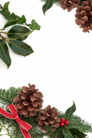 Christmas decorative border of holly, ivy, mistletoe, pine cones and blue spruce fir leaf sprig with red ribbon isolated over white background. photo