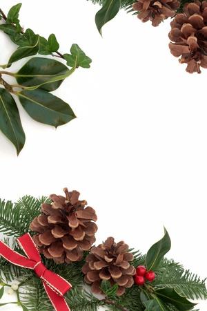 pomme de pin: No�l bordure d�corative de houx, de lierre, le gui, pommes de pin et d'�pinette bleue bouquet de feuilles de sapin avec des rubans rouges isol� sur fond blanc. Banque d'images