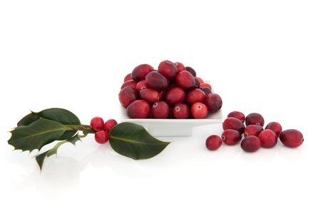 cranberry fruit: Cranberry fruit in a porcelain dish with holly berry leaf sprigs, isolated over white background.