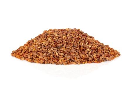 sedative: Bilta seed herb used in traditional chinese herbal medicine isolated over white background. Bai zi ren. Macrocephalae senen biotae orientalis. Laxative and sedative.