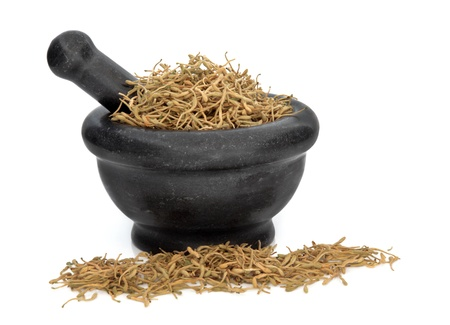 lonicerae: Honeysuckle dried flower petals used in traditional chinese herbal medicine in a black granite mortar with pestle isolated over white background. Jin yin hua. Radix lonicerae japonicae.