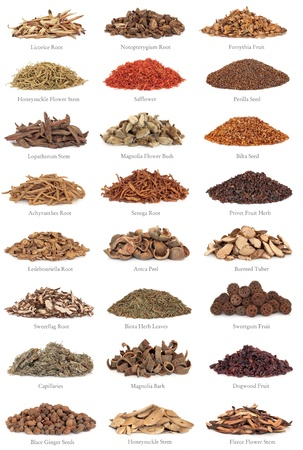Large collection of chinese herbs used in alternative medicine with titles isolated over white background. photo