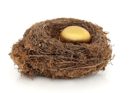 Bird nest with decorative golden egg symbolising financial security isolated over white background. photo