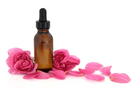 essentials: Rose flower petals and buds with aromatherapy essential oil glass bottle isolated over white background  Rosa rugosa