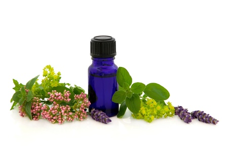 valerian: Lavender herb,valerian, ladies mantle flower heads with marjoram leaf sprigs and aromatherpay blue glass bottle isolated over white background  Stock Photo