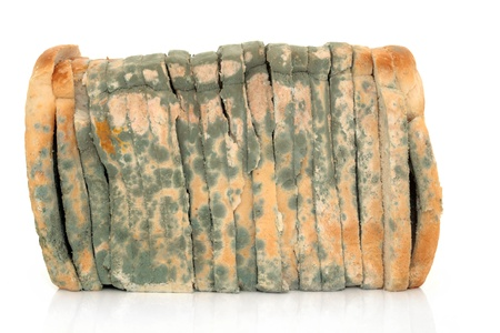 mouldy: Moldy sliced bread loaf over a white background