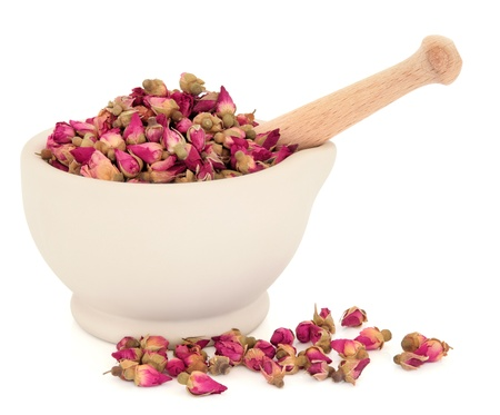 traditional remedy: Rosebud flowers used in traditional chinese herbal medicine and the cosmetic industry in a stone mortar with pestle over white background