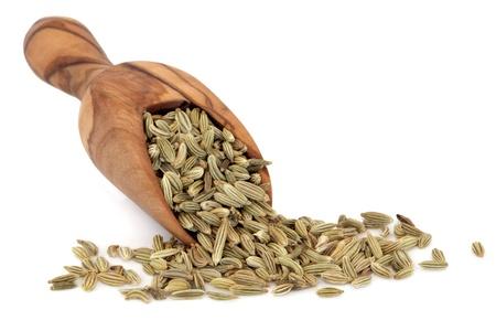 finocchio: Semi di finocchio in un cucchiaio in legno d'ulivo su sfondo bianco