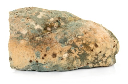 unsanitary: Mouldy bread loaf over a white background
