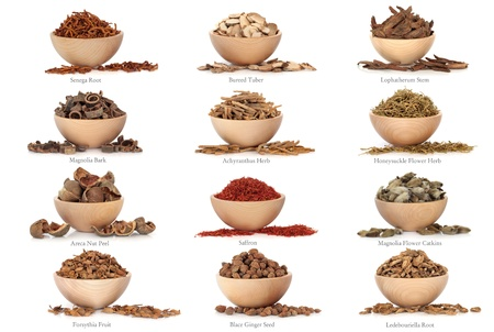 areca: Collection of traditional chinese herbal medicine in beech wood bowls isolated over white background