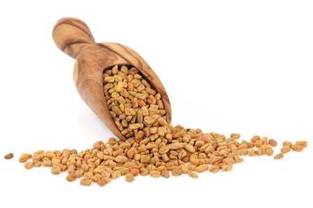 fenugreek: Fenugreek seed in an olive wood scoop over white background