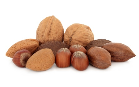 Pecan, almond, walnut, hazelnut and brazil nuts over white background  photo