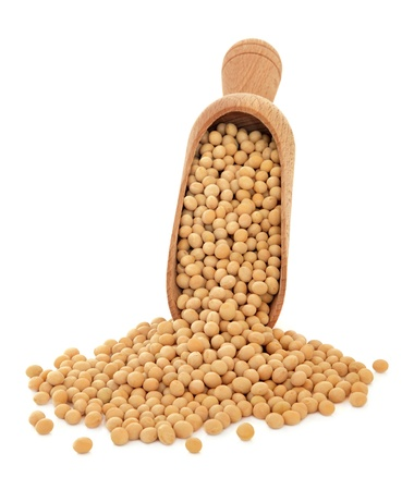 Soya beans in a wooden scoop over white background  photo